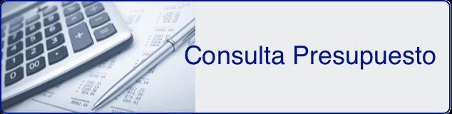 consulta_presupuesto